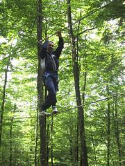 Accro-branches en Barn Pays basqueCDT64 (Tourisme 64) Tags: southwest sports nature forest landscape vacances holidays weekend basquecountry treeclimbing bearn paysbasque sjour sudouest accrobranche barn pyrnesatlantiques atlanticpyrenees bearnbasquecountry