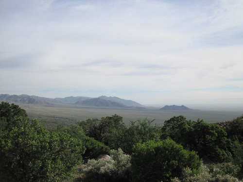View From the Pine Tree Trail