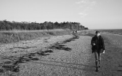 Zingst 38 (nickdemarco) Tags: