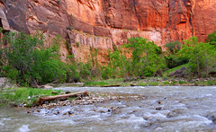 Virgin River winding out of the Narrows, Zion National Park, Utah (Damon Tighe) Tags: usa america sunrise river utah nationalpark sandstone nps north canyon virgin northamerica zion