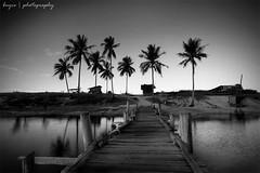 Peaceful Terengganu (Buyie | Think and Shoot !) Tags: blue sky blackandwhite bw cloud nature silhouette canon landscape flickr peace slow islam sigma palmtree harmony shutter terengganu kualaterengganu sigma1020 40d eos40d buyie