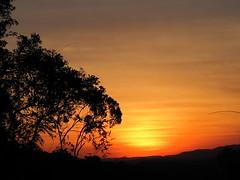 IMG_16_JUN2010 450 (Nelson Luiz Wendel) Tags: sunset paran del de landscape zonsondergang rainforest scenery do tramonto du ng santacatarina    auringonlasku rochas    serradomar granito mataatlntica napnyugta    sol puesta coucher soleil morrodosperdidos  florestaatlntica camposdealtitude zachd soca por regenwaldt   matahari terbenam  apus soare   paglubog araw  zpad slunce gn batm