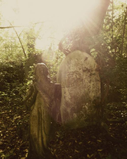 Nunhead Cemetery 8 ~ Angel