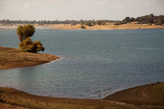 Folsom Lake Photo