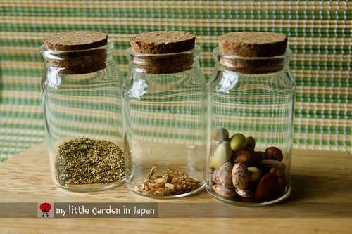 my-seeds-5
