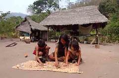 000000-52 (SPDA Actualidad Ambiental) Tags: gente selva nios per mujeres ashaninka alimentos satipo riotambo per nios comunidadesnativas