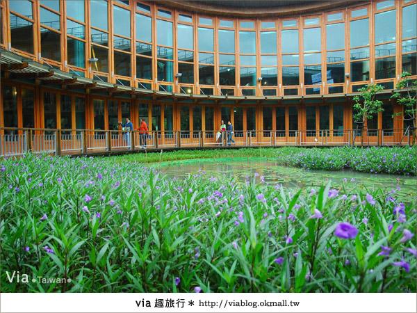 【花博一日遊】via遊花博(下)~新生園區:精彩夢想館及未來館、天使生活館