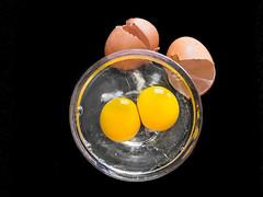 Eggs 5/5 (+Pattycake+) Tags: membrane macro eggshells closeup stilllife eggs yolk broken cracked blackbackground white hard soft texture light shade