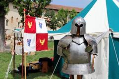 Vigevano (CarloAlessioCozzolino) Tags: vigevano palio xviipaliodeifanciulli armatura armor