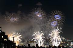 4th of July 2017 Macy's Fireworks-83 (Diacritical) Tags: brooklyn nycmacys nikond4 pattern 70200mmf28 30secatf71 july42017 85136pm f71 230mm 4thofjuly fireworks macysfireworks nyc night skyline