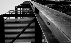 Up the stairs (frankdorgathen) Tags: structure steel iron metal nordrheinwestfalen stoppenberg essen ruhrgebiet zollverein zeche industriekultur industry outdoor building blackandwhite monochrome wideangle perspective step stair