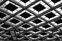 The Grid (EagleXDV) Tags: architecture grid pattern roof bw blackandwhite monochrome steel station trainstation train hub holland netherlands sky building urban view glass transperent repeat upwards connection diamond