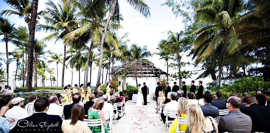 tropical destination wedding ceremony on the beach lots of palm trees and blue sky