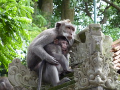 The Monkey Temples, Ubud