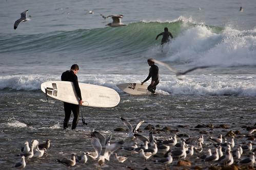 photo de surf 4741