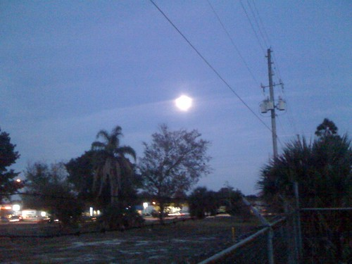 Blue Moon over the Swamp 2009