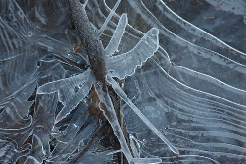 Ice patterns