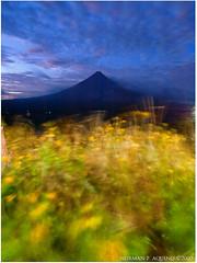 Swept away (landscapist) Tags: volcano mayon eruption legazpi mayonvolcano