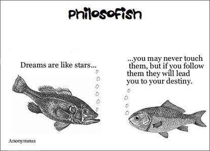 philosofish 15 small