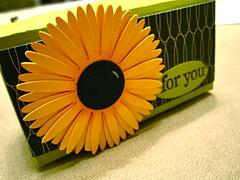 Sunflower box