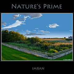 Nature's Prime, Light Paths Cross On Boardwalk - IMRAN™ — 3000+ Views! 165+ Comments! 20+ Favorites! (ImranAnwar) Tags: 2009 blue clouds d300 eastpatchogue fall framed greatsouthbay green imran imrananwar landscapes lifestyles longisland marine nature newyork nikon outdoors patchogue seasons sky square suffolk tranquility trees water yellow