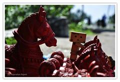 | Danbo Rode a Horse that took him nowhere | (Rajendran Rajesh) Tags: singapore tamilnadu raj rajesh pondicherry japanesetoy danbo d90 project365 rajeshpics danboard revoltechdanboard rajendranrajesh 365dayswithdanbo danboardinsingapore india2010 pongal2010 danboinindia danbosindianexperience dsc2234rr