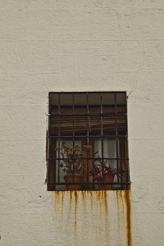 ventana oxidada en Cáceres v1