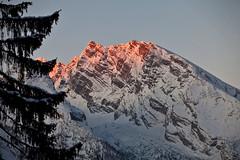 Early morning light on Watzmann (Nathan A) Tags: snow mountains alps germany bayern deutschland bavaria berchtesgaden bgl hinterbrand hinterbrandlodge