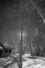 lake house 1/2010
