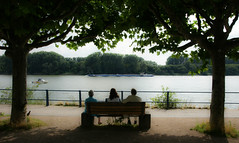 Watching the traffic on Rhine River (Elvir72) Tags: germany wiesbaden rhineriver