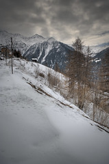 Bleak HDR (NoDrawingSkills) Tags: road winter mountain snow france alps tree photoshop nikon valley nik nikkor savoie hdr d3 cs4 peisey photomatix vallandry tonemapped colorefexpro viveza 2470mmf28g capturenx2