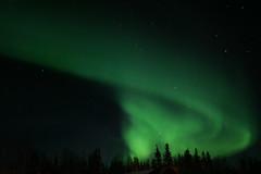 [フリー画像] [自然風景] [空の風景] [夜空の風景] [オーロラ] [緑色/グリーン] [カナダ風景]     [フリー素材]