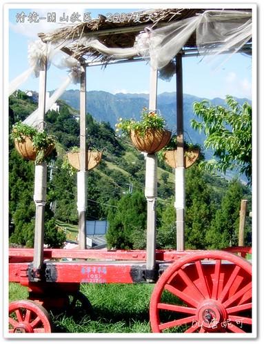 唐妮可☆吃喝玩樂過生活 拍攝的 20090802_清境關山牧區13。