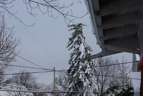 February 2010 012