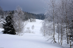 umava (Pavel Vanik) Tags: winter nature canon eos czechrepublic bohemia 30d umava 1755is modrava