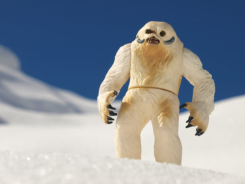 Wampa on the hill