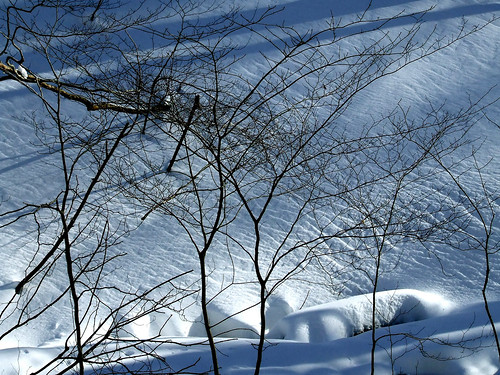 snow patterns 3