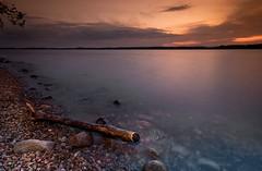 Broken Bone (PI (Unresolved)) Tags: sunset sky lake lightpainting water quebec driftwood shore longexpo pointeàdavid dragondaggerphoto yourwonderland