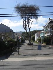 blocked off (chasingbluebirds) Tags: island avalon 2010 santacatalina