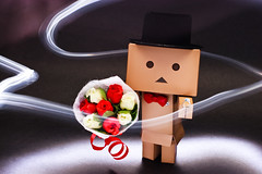 Can you..merry with me? (Ali Tse) Tags: light lightpainting flower hat rose toy toys amazon ring merry limited valentinesday danbo  revoltech jfigure danboard  bowltie