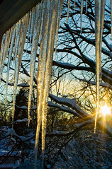 Sunset and Ice 1 (Lori Lyra) Tags: winter icicles 20710 snowmaggedon