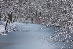 snow blossom (c-h-l) Tags: schnee trees winter snow cold tree ice water river germany deutschland frozen essen nikon wasser frost path nrw brcke kalt eis bume ruhr ruhrgebiet baum 2010 chl coverd ruhrarea gefroren d90 baldeneysee essenwerden 18105mm nikond90 cityhumanlife brehminsel