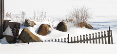 Fence Buried in Snow (DSF_1360) (masinka) Tags: new york winter snow ny rock fence pond winters burried langford burry