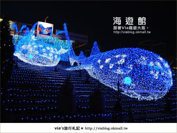 【via關西冬遊記】世界最大極的水族館~大阪海遊館4