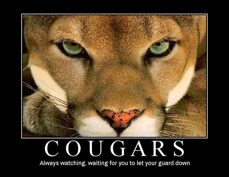 2009128174423_Cougar-4