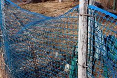 garden fence 036