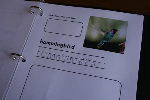 Hummingbird page