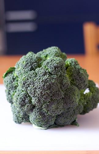 Come cucinare i broccoli mele al forno for Cucinare broccoli