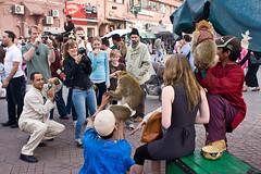 (Gonalo_Ferreira) Tags: street travel monkey photo morocco maroc marrakech medina marrocos djemaaelfna