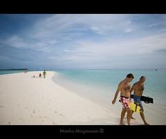 Maldives (N) Tags: ocean travel praia strand relax sand asia areia indianocean resort viajes destination spa  destino spiaggia viajar sabbia atoll maldive sia maldivas   rejse adventuretravel viaggiare atollo destinazione      maldiverne luxuryvacation udvej oceanondico indiskeocean    islasmaldivasmaldives islandresortbeachplayaturismotraveldestinodestinationindian feriefornjelse   vacanzadipiacere vacationpleasure friasdeluxo prazerdefrias noeliamagnusson wwwnoeliamagnussoncomnnoemagnusson nmagnusson